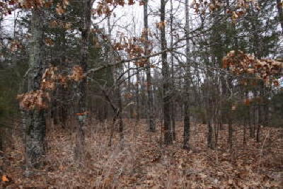 Residential Lots & Land For Sale: Pd Flat Road