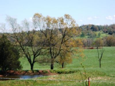 Boone County Residential Lots & Land For Sale: Hog Creek Road