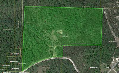 Lead Hill, Diamond City Residential Lots & Land For Sale: 4861 Lower Place Drive