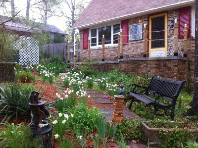 Lead Hill, Diamond City Single Family Home For Sale: 219 Bayshore