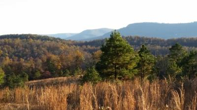 Jasper Residential Lots & Land For Sale: Yardell Road