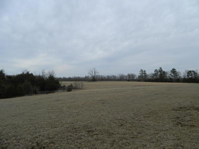 Carroll County Residential Lots & Land For Sale: Tract 2 Cr 972