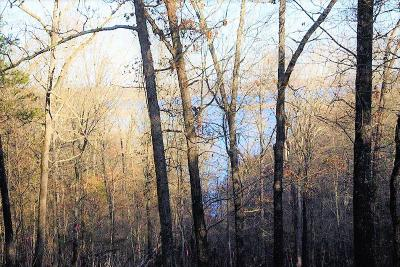 Boone County Residential Lots & Land For Sale: Lot 2 E Persimmon Point Road