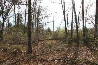 Boone County Residential Lots & Land For Sale: Lot 10 E Persimmon Point Road