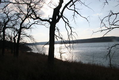Boone County Residential Lots & Land For Sale: Lot 17 E Persimmon Point Road