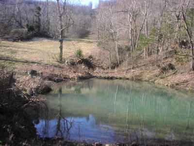 Jasper Residential Lots & Land For Sale: Off Cr 6870 To Cr 6871
