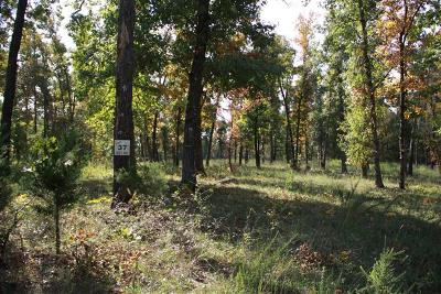 Yellville Residential Lots & Land For Sale: Lot 37 Air Park Drive
