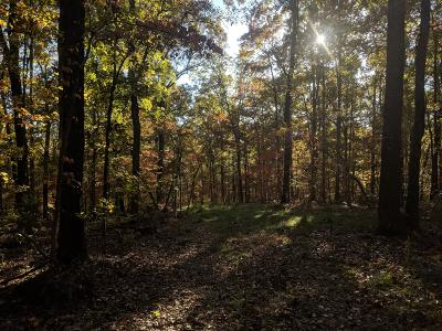 Newton County Residential Lots & Land For Sale: Nc3050