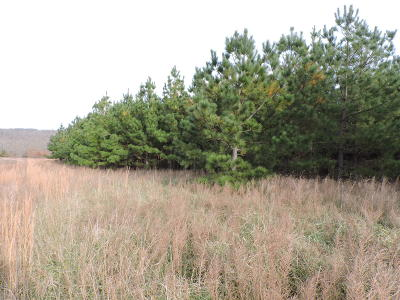 Newton County Residential Lots & Land For Sale: Nc 1502 Lot 12