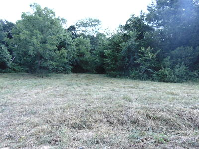 Carroll County Residential Lots & Land For Sale: Co Rd 8534