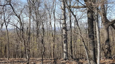 Marion County Residential Lots & Land For Sale: Hwy 125
