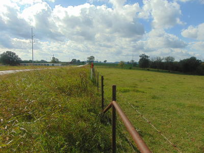 Berryville Residential Lots & Land For Sale: Highway 143