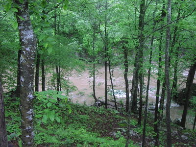 Newton County Residential Lots & Land For Sale: 8465 County Road
