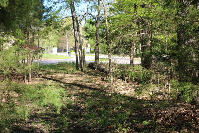 Marion County Residential Lots & Land For Sale: Versailles Drive