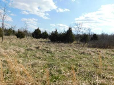 Boone County Residential Lots & Land For Sale: 10671 Ar-392 Highway