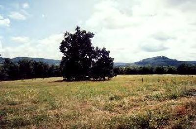 Boone County Residential Lots & Land For Sale: 4299 Moonbeam Drive