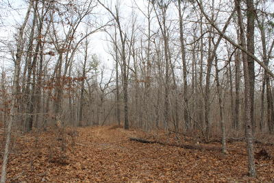 Yellville Residential Lots & Land For Sale: 8157 Ar-14