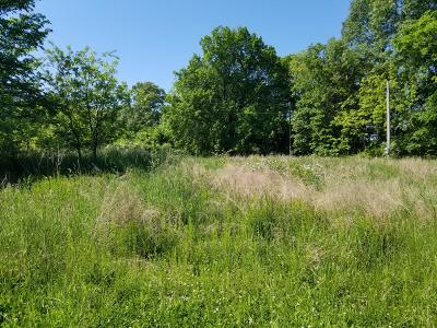 Residential Lots & Land For Sale: Central Avenue