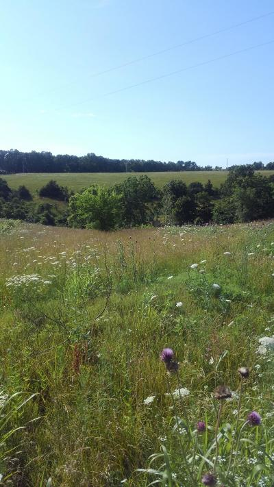 Omaha Residential Lots & Land For Sale: Highway 14 East