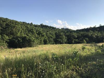 Lead Hill, Diamond City Residential Lots & Land For Sale: 32.39 Acres On Hwy 281