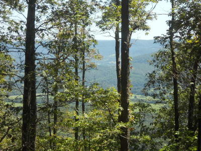 Newton County Residential Lots & Land For Sale: Hwy 7 South