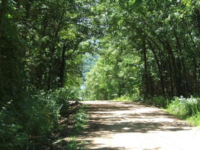 Residential Lots & Land For Sale: Chaney Cemetary Road