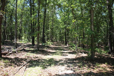 Marion County Residential Lots & Land For Sale: Hillbilly Hollow Ln.