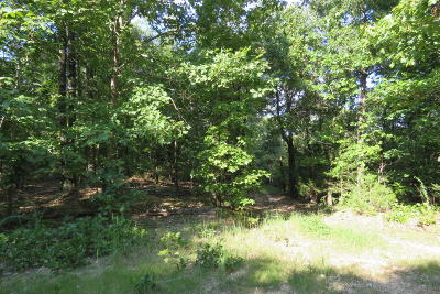 Residential Lots & Land For Sale: 23 Ac Woodys Lane