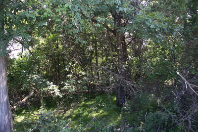 Lead Hill, Diamond City Residential Lots & Land For Sale: Horseshoe Bend Road
