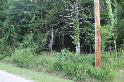 Marion County Residential Lots & Land For Sale: Rivercliff
