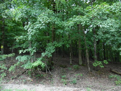 Marion County Residential Lots & Land For Sale: 571 Mc 8042