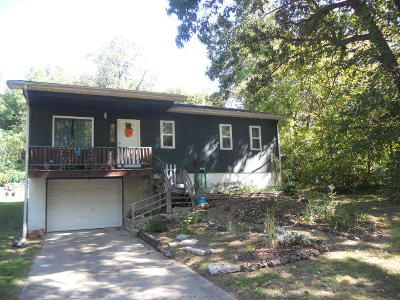 Boone County Single Family Home For Sale: 717 W Newman