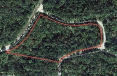 Residential Lots & Land For Sale: Lot 35 Copenhaver Trail