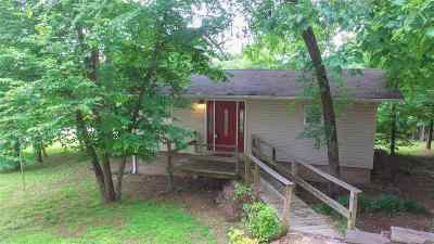 Hot Springs Single Family Home For Sale: 244 Nickens
