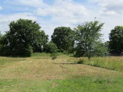 Residential Lots & Land For Sale: 353 Park St