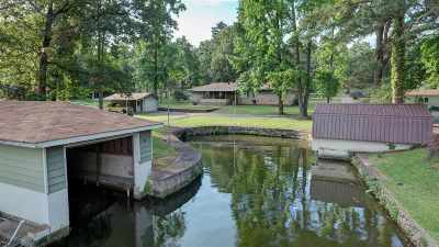 Hot Springs, Hot Springs Village, Malvern, Pearcy, Royal, Benton Single Family Home For Sale: 231 Peninsula Dr
