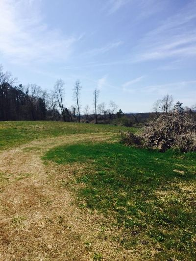 Residential Lots & Land For Sale: Lot 1,2, 3 Crestwood