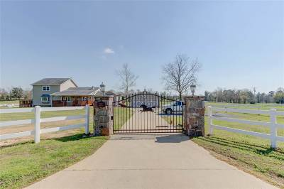 Single Family Home For Sale: 2209 Old Dallas Road