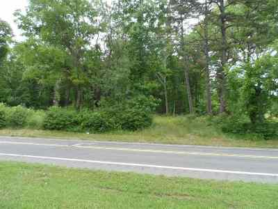 Garland County Commercial For Sale: Park Avenue