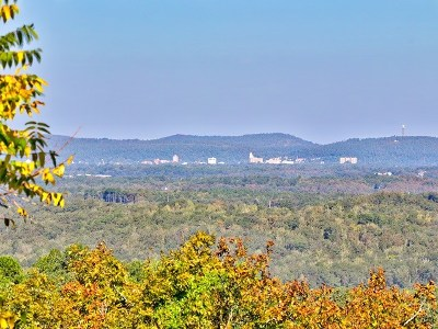 Hot Springs AR Residential Lots & Land For Sale: $29,500