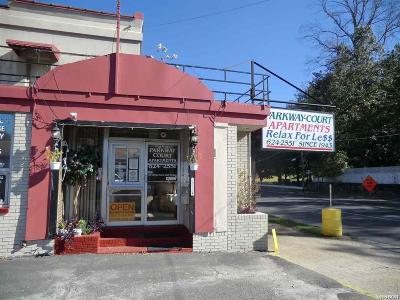 Hot Springs Commercial For Sale: 815 Park Avenue