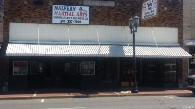 Malvern Commercial For Sale: 219 Main St