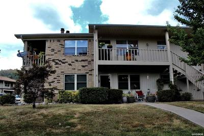 Garland County Condo/Townhouse For Sale: 160 Cooper #15A