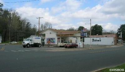 Hot Springs Commercial For Sale: 501 Park Avenue