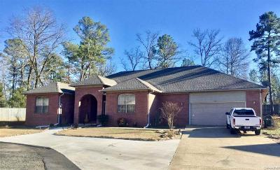 Hot Springs Single Family Home For Sale: 102 Deerview Circle