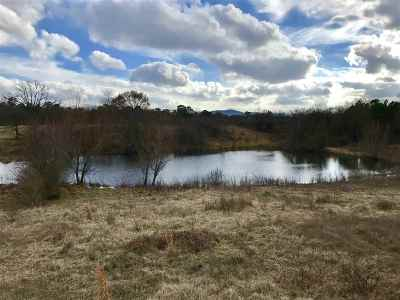 Hot Springs AR Residential Lots & Land For Sale: $450,000