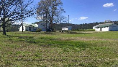 Bismarck, Fountain Lake, Glenwood, Hot Springs Village, Magnet Cove, Malvern Single Family Home For Sale: 726 Pump Station Rd