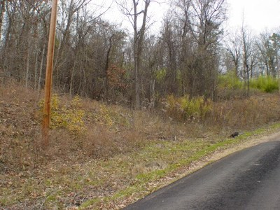Magnet Cove Residential Lots & Land For Sale: Xxx Copper Head Rd