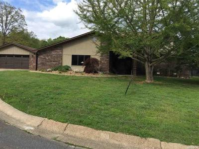 Hot Springs Single Family Home For Sale: 104 Green Meadow Ct