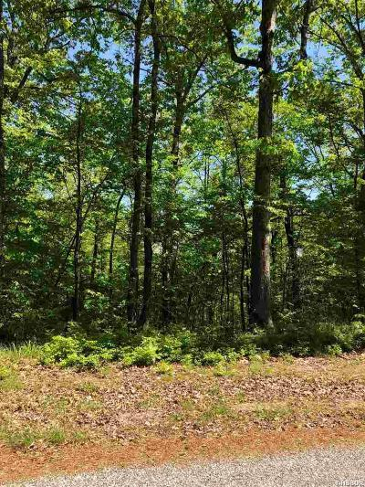 Residential Lots & Land Active - Contingent: 276 Haymeadow Ln
